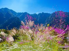 Kamikochi, Mountains, Nature, Travel, Viajes, Naturaleza, Destinations, Traveling, Trips