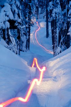 ata-raxie: Over the Hills and Through the Woods by Tim Peare Long exposure of a snowmobile traveling through a winter landscape. This is a neat picture. Winter Fun, Winter Sports, Winter Scenery, Snowboarding, Skiing, Vintage Sled, Foto Fun, Snow Activities, Hiking Essentials