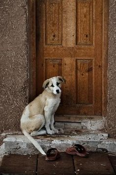 """Let me in Mom"""