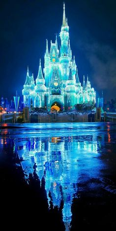 Cinderella Castle lit up at night