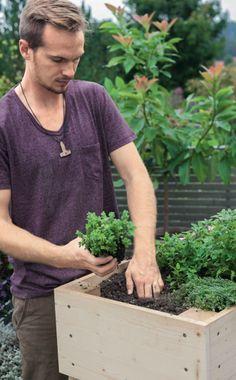 Die 80 Besten Bilder Von Hochbeet Gardens Raised Beds Und Raised