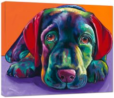 Ron Burns I love this it looks just like my dog!!