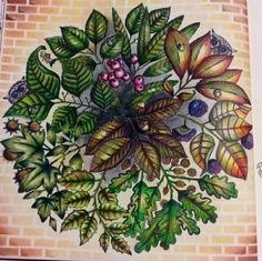 Mandala Owls Secret Garden. Mandala de Corujas Jardim Secreto. Johanna Basford