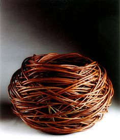 Lizzie Farey: 'Flanders Red Bowl' flanders red willow