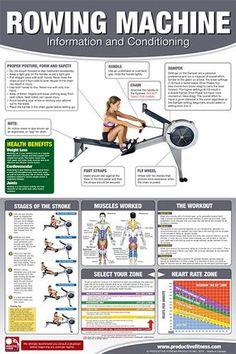 14 incredible rowing machine workouts to lose weight drop fat co ed back workout professional fitness gym wall chart poster fitnus corp fandeluxe Image collections