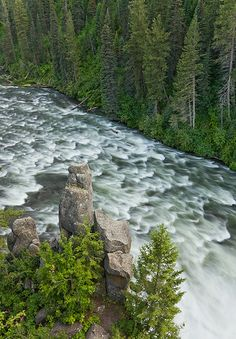 Rapids below Upper Mesa, Henrys Fork, in the Caribou-Targhee National Forest (east). Can't you just hear the rush of water?