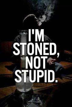 I'm stoned not stupid…http://buff.ly/2vPeEze  #potvaletsantabarbara #stoner #weed #smoke #bong #cannabis #marijuana #potvalet