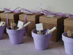 bomboniera ecologica vasetto con bulbo da far fiorirecolor lavanda