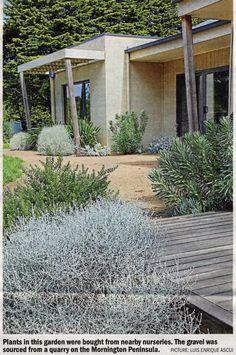 The Age - Domain Bush Garden, Garden Fire Pit, House Landscape, Landscape Design, Garden Design, Garden Ideas Australia, Backyard Cabin, Australian Native Garden, Coastal Gardens