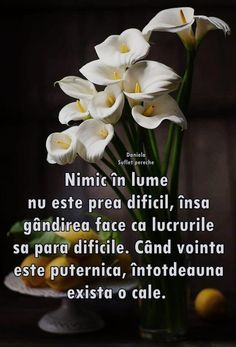 Inspiring Quotes About Life, Inspirational Quotes, Italian Quotes, True Words, Tudor, Verses, Life Quotes, Friends, Garlic
