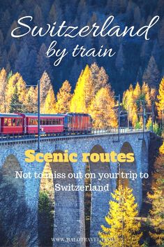 Travel Switzerland by train. Switzerland is also owner of some of the most scenic train routes in Europe. The Bernina Express, Swiss Chocolate Train and Glacier Express are routes to remember!  switzerland Travel  Accédez à notre site beaucoup plus d'informations   https://storelatina.com/switzerland/travelling  #viajeswitzerland #suiçaviaje #suiçaviagem #vacaciones