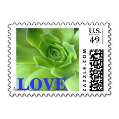 These #green and #blue #succulent #plant #love #postage #stamps brighten up any correspondence, but they're especially pretty when used to send #wedding, #bridal #shower, engagement #party, vow renewal, or anniversary #invitations, #announcements, save the dates, RSVPs, and thank you notes. Available in horizontal or vertical format, different color text, and fully customizable / personalizable (add your own names, dates, and/or phrase when ordering). #stamp #floral #foliage #postal #plants