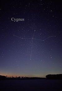 Cygnus.....grazie ....tutto quello che sono sei stato tu...