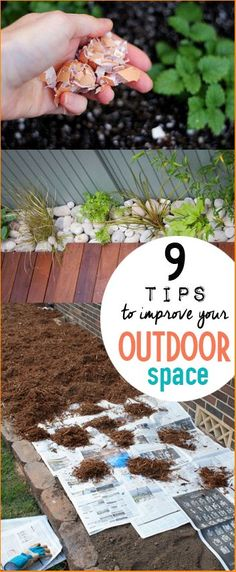 9 Tips and Tricks to Improve your Outdoor Space.  Clean up the yard, garden and patio with these great ideas.  Landscape improvements for curb appeal.