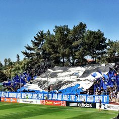 1906 Ultras (San Jose Earthquakes) MLS.                                                             cred - afrikantraveler (IG)