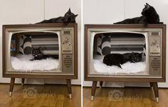 kattenbed gemaakt van een retro tv