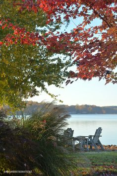 Weekend Waterview: Fall's Last Hurrah and Arrangement Golden Leaves, Autumn Leaves, Napkin Folding, Autumn Day, Happy Weekend, So Little Time, Warm And Cozy, Sunny Days, Mother Nature