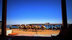 Dahab-south Sinai