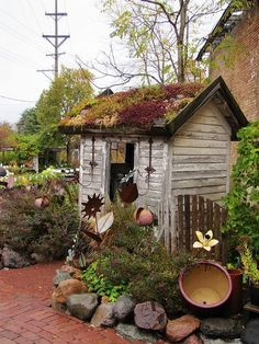 Cute little garden shed with plants on the  roof.