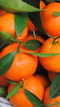 Fruit And Veg, Fruits And Veggies, Fresh Fruit, Vegetables, Orange Wallpaper, Food Wallpaper, Fruit Photography, Exposure Photography, Orange Aesthetic