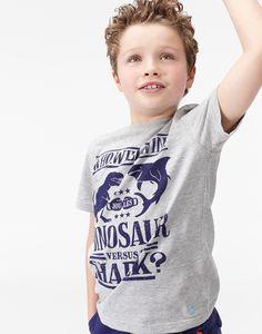 Jnrmarly Grey Marl Dino Screen Print Jersey T-Shirt | Joules UK