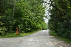 Sibbald Point Provincial Park, East Campground, Camping in Ontario Parks Ontario Parks, Sidewalk, Country Roads, Canada, Camping, Vacation, Summer, Walkway, Campsite