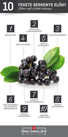 A fekete berkenye nagy mennyiségű B2-, B3- és B6-vitamint tartalmaz. C-vitaminból is rengeteg van benne, ami immunrendszerünk egyik alapvető vitaminja. Pektinjei segítenek a toxinok és salakanyagok eltávolításában. A fekete berkenye nagyszerű kiegészítő a cukorbetegség kezelésében. Magas vérnyomás és -koleszterinszint fennállásakor is ajánlott a fogyasztása. Igyál te is rendszeresen fekete berkenye levet ha cukorbetegséged van, vagy ha túl sok szénhidrátot fogyasztasz! Az egészség legyen veled! Herbs, Fruit, Health, Health Care, Herb, Salud, Medicinal Plants