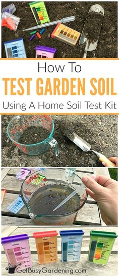 Gardening For Beginners This easy, step-by-step garden soil testing guide will show you exactly how to test the nutrients and pH levels of your soil at home using a soil test kit.