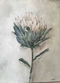 Single white protea, painted with acrylic on canvas Flower Painting Canvas, Abstract Canvas Art, Diy Painting, Protea Art, Protea Flower, Botanical Drawings, Botanical Prints, Watercolor And Ink, Watercolor Flowers