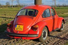 Car Volkswagen, Vw Beetles, Bugs, Porsche, Type 1, Jeans, Classic, Vehicles, Random Stuff