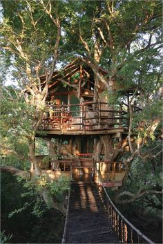 Multi storey treehoue from the book New Treehouses of the World by Peter Nelson
