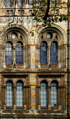 Ornate windows - wish I could see what the rest of the building looks like! Architecture Old, Amazing Architecture, Architecture Details, Gothic Windows, Windows And Doors, Church Windows, Belle Villa, Architectural Features, Window Design