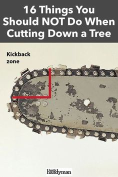 When felling a tree, it is imperative that you take the necessary precautions (and avoid these 16 no-nos) to keep you and the structures around you safe. Tree Stump Killer, Tree Felling, Wood Garage Doors, Farm Tools, Backyard Projects, Landscaping Tips, Woodworking Wood, Useful Life Hacks, Home Repair
