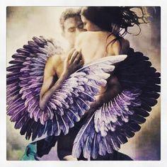 Wrapped in his Angel Wings Dark Fantasy Art, Dark Art, Guerrero Dragon, Angel Artwork, Twin Flame Love, Twin Flames, Angel Warrior, Ange Demon, Twin Souls