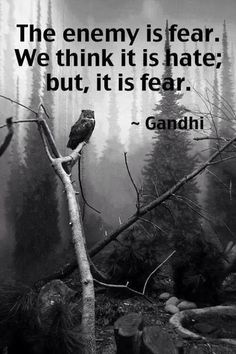 I had an epiphany many years ago, this quote sums it up quite nicely. Fear is the opposite of love not hate. Wars happen not because we hate our enemies but because we fear them. Fear creates and intensifies our feelings of separatism.