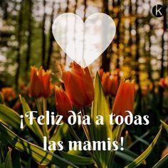Feliz #diadelamadre ! A todas las mamis os deseamos un domingo en familia lleno de amor. Porque una madre crea vida juegos diversión y mucho más  #mamá #hijos #diaespecial #vilafrancadelpenedes #reunionfamiliar #familia #bebes #amor