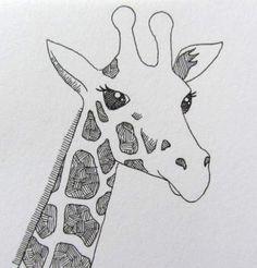 giraffe drawing line drawings easy cartoon animal face pencil draw paint simple clare willcocks animals beginner sharpie girraffe painting head