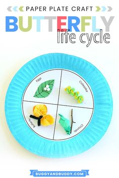 Paper Plate Crafts For Kids, Spring Crafts For Kids, Crafts For Kids To Make, Projects For Kids, School Projects, School Ideas, Art Activities For Kids, Science For Kids, Sequencing Activities