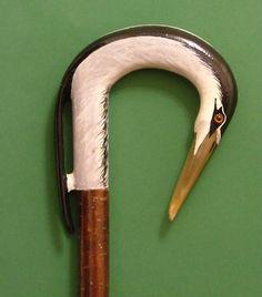 Rams horn heron on hazel