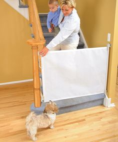 Look at this Dreambaby White Retractable Gate on #zulily today!