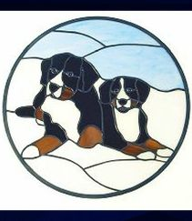 two bernese mt dog window