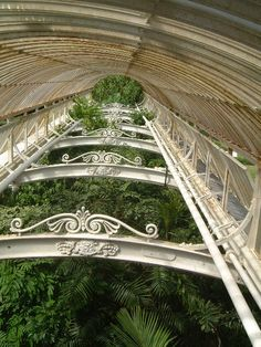 Kew Gardens, London ~ Hothouse Roof Interior ~ Photo by. Kew Gardens London, Victorian Greenhouses, Bell Gardens, Glass Structure, Hothouse, London Places, Interior Photo, Art And Architecture, Botanical Gardens