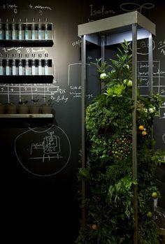 ISETAN GLOBAL GREEN 2012 AMKK(東 信、花樹研究所)