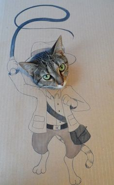 Funny Pictures Of Cats In Silly Cardboard Cutout Costumes