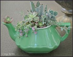 Tea Pot and Succulents- via 4 Surya Garden on Facebook