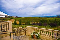 Domaine Carneros winery, in the Carneros region of Napa. A lovely place to enjoy a glass of sparkling wine and a snack (I recommend their Le Rêve blanc de blancs.)