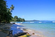 Puerto Limon Costa Rica | ... : Playa Cocles, Puerto Viejo, Limon, Costa Rica. | Travels and Tours