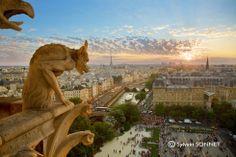 Notre-Dame à Paris par Sylvain Sonnet, photographe