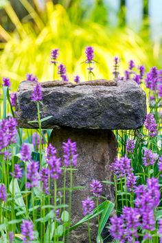 A stone birdbath, in the center of a vegetable garden with purple betony around it. Photo: Rob Cardillo for The New York Times
