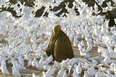 'Pigeon feeding near Blue Mosque', 1991, Steve McCurry